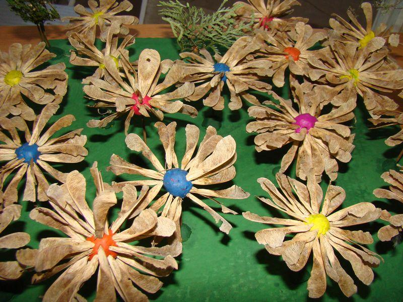 Цветы поделки из семян